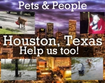 Hurricane Harvey Pet Relief